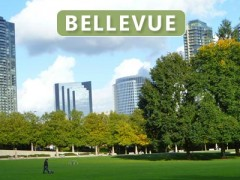 Bellevue, WA Community Information and Homes for Sale