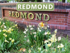 Redmond, WA Community Information and Homes for Sale
